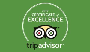 Trip Advisor - private Disney VIP tours