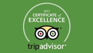 Trip Advisor - private Disney VIP tours