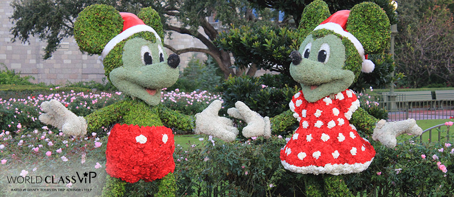 VIP-Disney-Tours-this-Christmas